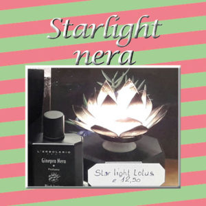 13_starlight-nera